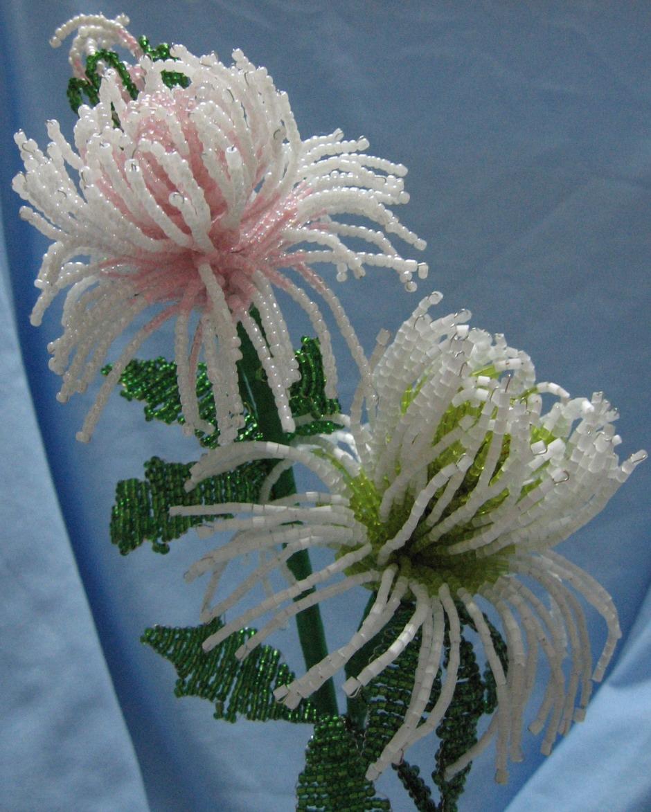 Астра - цветок из бисера, схема плетения / Бисероплетение.
